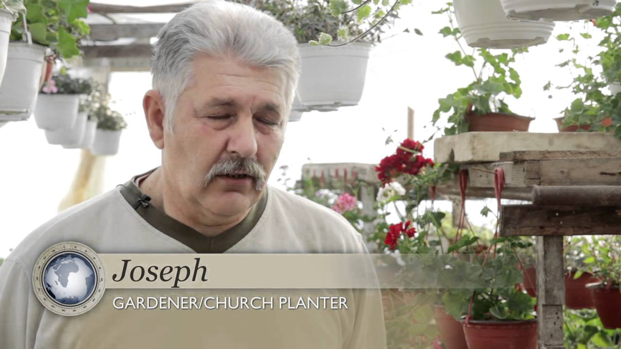 The Planter - Serbia